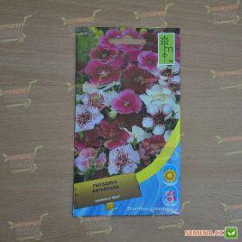 Гвоздика китайская смесь семена одн. (Moravoseed)