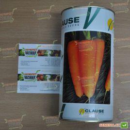 Шантане семена моркови Шантане средней 110-120 дн. (Clause)
