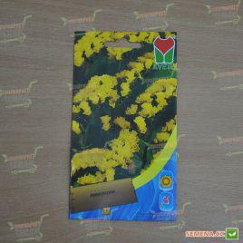 Лимониум желтый семена однол. (Moravoseed)