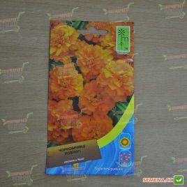Бархатцы раскидистые низкие оранжевые семена (Moravoseed)