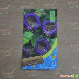 Ползучая кобея фиолетовая семена (Moravoseed)