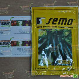 Гамбит F1 семена цуккини раннего темно-зеленого (Semo)