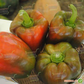 Телестар F1 семена перца сладкого тип Блочный раннего 60-62 дн. куб. 200-300 гр. 10х9 см зел./красн. (Hazera)