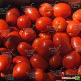 Ариозо F1 семена томата дет. (Lucky Seed )