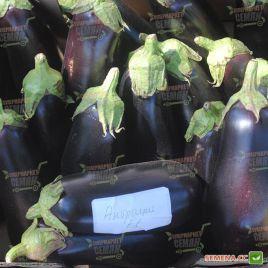 Антрацит F1 семена баклажана тип Алмаз раннего 50-60 дн. 250-300гр. 19-22см (Lucky Seed)