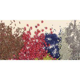Люстеркотэ концентрированный краситель (Ариста)