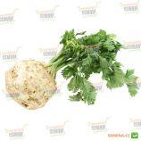 Аполло семена сельдерея корневого (Wing Seed)