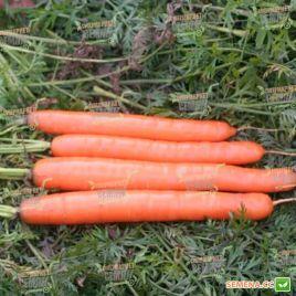 Метро F1 семена моркови Нантес средней 125 дн. (Agri Saaten)