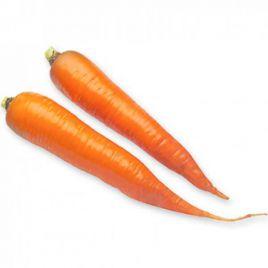 Каротан (1,6-1,8) семена моркови Флакке поздней 155-160 дн. (Rijk Zwaan)