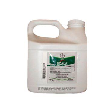 Скала фунгицид концентрат суспензии (Bayer)