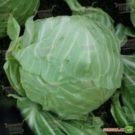 Ирида F1 семена капусты б/к ранней 60 дн. 1,5-2 кг (Agri Saaten) НЕТ ТОВАРА