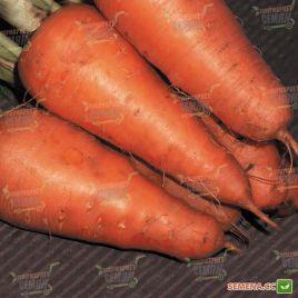 Катрин семена моркови Шантане (Agri Saaten)