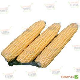 Санрайз F1 семена кукурузы суперсладкой (Agri Saaten)