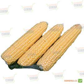 Санрайз F1 семена кукурузы суперсладкой Sh2 ранней 70дн. 20см 14-16р. (Agri Saaten)