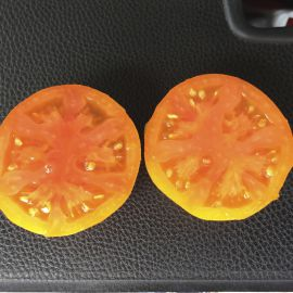Солидо F1 семена томата дет. раннего 90 дн. окр. 220 гр. оранж. (Lark Seeds)