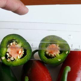 1851 F1 семена перца горького раннего 60 дн. 70 гр. (Lark Seed)