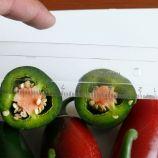 1851 F1 семена перца горького раннего 60 дн 70 гр (Lark Seed)