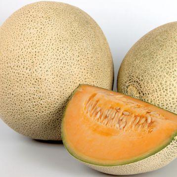 Карамеза F1 семена дыни тип Фулл Неттед Канталупе 1,6-1,8 кг (Enza Zaden)