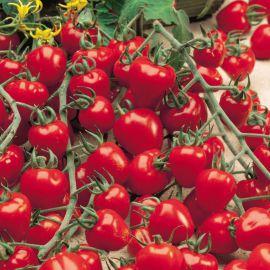 Ягодо F1 семена томата индет. черри раннего 60-70 дн. окр. 22-25 г. (Semo)