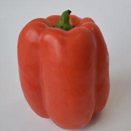 Кримсон Кинг F1 семена перца сладкого раннего300-350 гр. зел./красн. кубов. (Hazera)