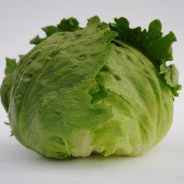 Руморс семена салата кочанного 50-55 дн. (Bejo)