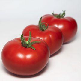 КС 301 F1 (KS 301 F1) семена томата индет. окр.-прип. 180-200г (Kitano Seeds)