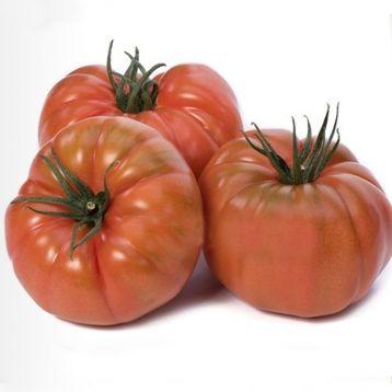 Ред Кой F1 семена томата индет. тип Марманде раннего 100-110 дн. окр. 300-320г (Yuksel)