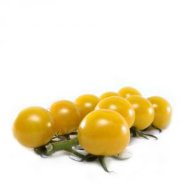 КС 3670 (KS 3670) F1 семена томата дет. черри жел. (Kitano Seeds)