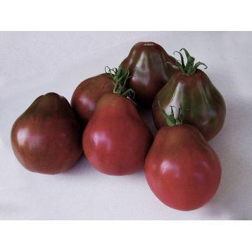 томат трюфель чёрный