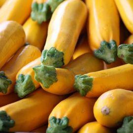 Золотинка насіння кабачка ранньостиглого жовтого (Україна)