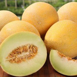Берегиня семена дыни средней 74-92 дн. 2,5-3кг окр. оран./бел. (Професійне насіння)