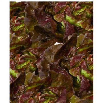 салат американский коричневый