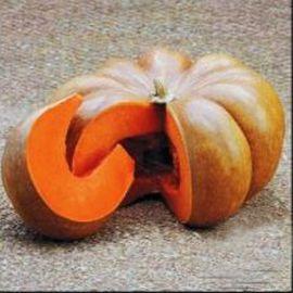 Мускат де Прованс семена тыквы мускатной средней 110-115дн. 3-4 кг (Satimex СДБ)