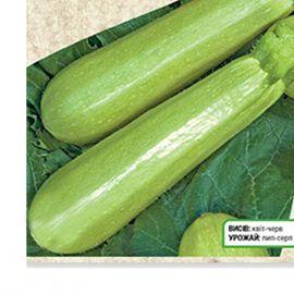 Грибовский семена кабачка раннего 0,7-1,3 кг. (Украина СДБ)