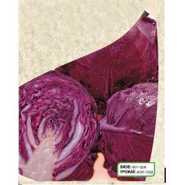 Лангедейкер Дауер семена капусты к/к поздней 1,5-2,2 кг окр.-прип. (Satimex СДБ)