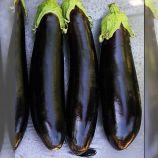 LS 1317 F1 насіння баклажана (Lucky Seed)