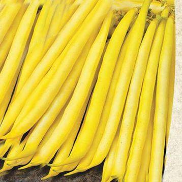 Золотая звезда семена фасоли спаржевой кустовой ранней желт. (Satimex СДБ)