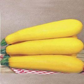 Голдкреш F1 семена цуккини желтого (Wing Seed)