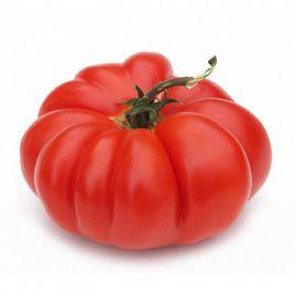 Флорентино семена томата индет.раннего 90 дн. ребрист. 180-200 гр. (Anseme)