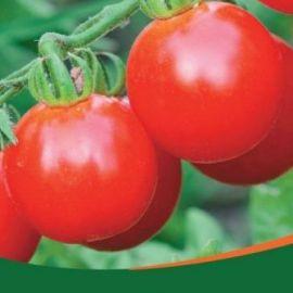 Черри красный семена томата индет. среднераннего 95-105дн 30-40г окр. крас. (Професійне насіння)