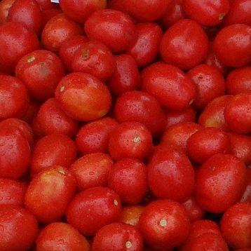 Мицено F1 семена томата дет. среднераннего 60-65 дн. слив. 70-75 г. (Syngenta)