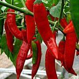 Анахайм красный семена перца среднего 15-20 см красн (Satimex СДБ)