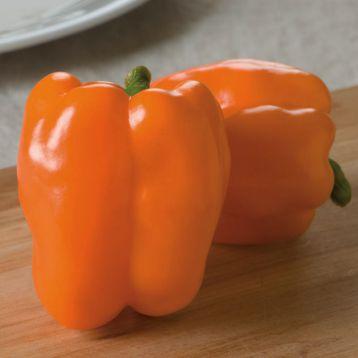 Гурман семена перца сладкого раннего куб. 10-12 см желт. (Satimex СДБ)