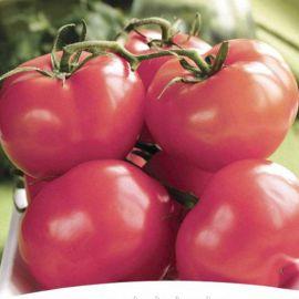 Пинк Топ F1 семена томата индет. среднего 70-75 дн. окр. 270-300 гр. роз. (NongWoo Bio)