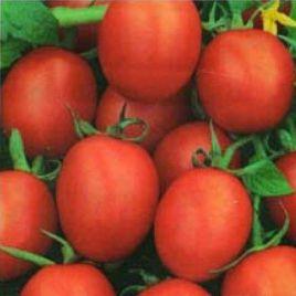 Немадор семена томата дет. (SAIS)