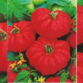 Фиорентинский семена томата дет. ребристого (Euroseed)