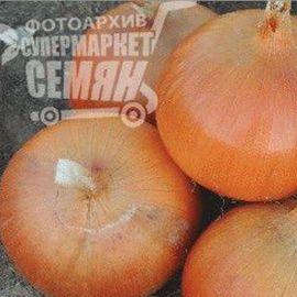 Мурена F1 семена лука репчатого раннего (Erste Zaden) НЕТ СЕМЯН
