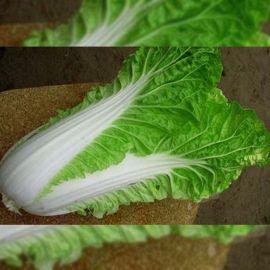 Айкидо F1 семена капусты пекинской средней 70-73 дн. 1,5-2,5 кг (Гавриш) НЕТ ТОВАРА