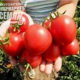 Бинго F1 семена томата дет. (United Genetics)
