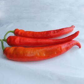 ЕС 8716 F1 (ЕS 8716 F1) семена перца острого 80-85дн. 80-110гр. 5х21см св.-зел./красн. (Ergon seeds)